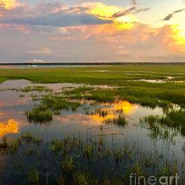 Sunset Over The Marsh by Tina M Powell