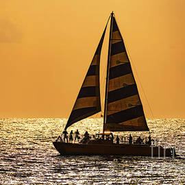 Sunset Sailing on a Catamaran by Phillip Espinasse