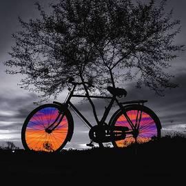 Sunset Spokes by Teresa Trotter