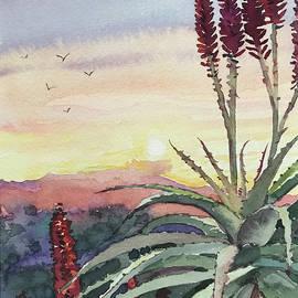 Sunset Topanga by Luisa Millicent