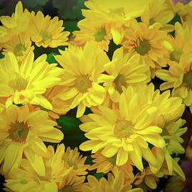 Sunshine in Flowers by Susan Buscho