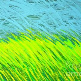 Sunshine in the Grassy Meadows by Ann Brown