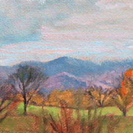 Sunshine on a Cloudy Day - Along the Blue Ridge Parkway by Bonnie Mason