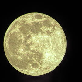 Super Moon - April 7, 2020 by Jeff Iverson