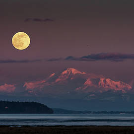 Super Snow Moon from Boundary Bay by Pierre Leclerc Photography