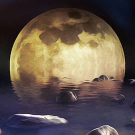 Superfluous Moon by Susan Maxwell Schmidt