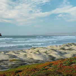 Surf Beach Lompoc California by Jennifer Stackpole
