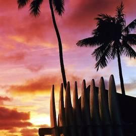 Surfboard Sunset by DJ Florek