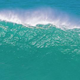 Surfing Waimea Bay by Douglas Peebles