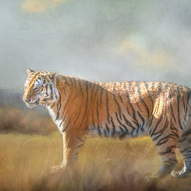 Surveying the Land by Teresa Wilson