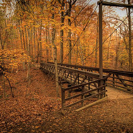 Suspension Bridge in the F. A. Seiberling Nature Realm Park by Dennis Lundell