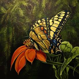 Swallowtail by Pam Veitenheimer