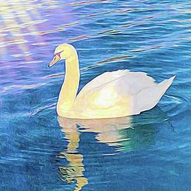 Swan In The Light by Mo Barton