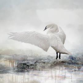 White Swan by Marilyn Wilson