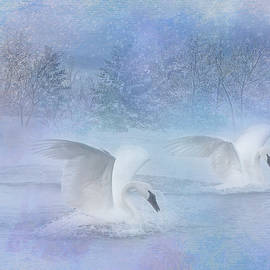 Swan Winter Wonderland by Patti Deters