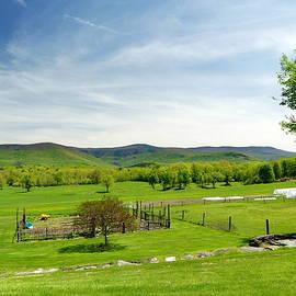 Sweet Brook Farm by Lyuba Filatova