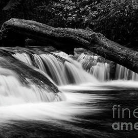 Sweet Creek Monochrome by Bob Christopher