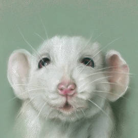 Sweet Faced White Rat Portrait by MM Anderson