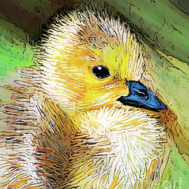 Sweet Little Duckling by Tina LeCour