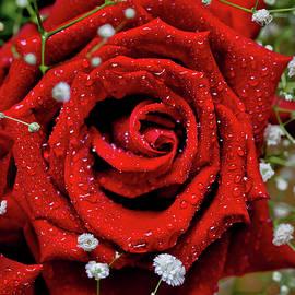 Sweet Valentine by Az Jackson