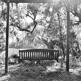 Swinging In Paradise Black And White by Lisa Wooten