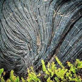 Swirling Lava by Derek Winters