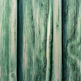 Swirls in Green by Liz Albro