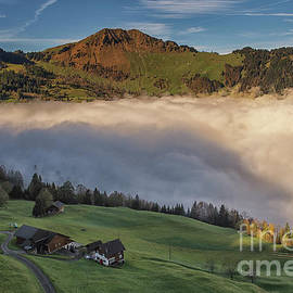 Swiss green mountain top by Liran Eisenberg