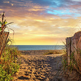 Take a Walk on the Dunes by Debra and Dave Vanderlaan