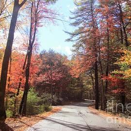 Take me home Country roads by Lennie Malvone