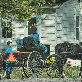Taking A Buggy To Town by Janice Pariza