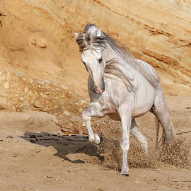Taking Charge In The Sand by Athena Mckinzie