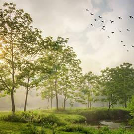 Taking Flight on a Misty Morning  by Debra and Dave Vanderlaan