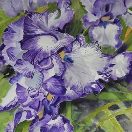 Tall Bearded White Purple Iris Two by Patty Strubinger