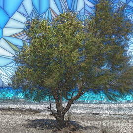 Tamarisk on Ionian beach, stained glass effect by Paul Boizot