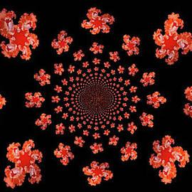 tangerine II ... by Judy Foote-Belleci