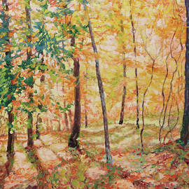 Tapestry of Light - Sunny Morning on Mill Mountain by Bonnie Mason