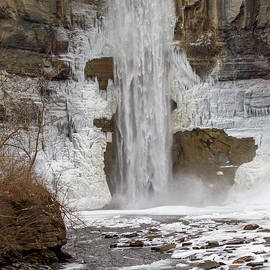 Taughannock Falls Gorge Trail 28 by William Norton