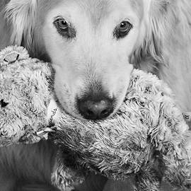 Teddy with Teddy Bear by Laurie Minor