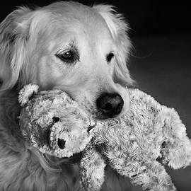 Teddy with Teddy by Laurie Minor