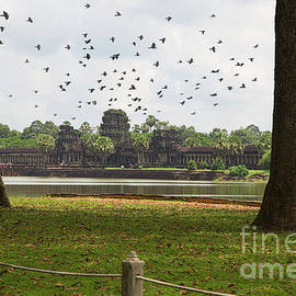 Temple Angkor Wat 12th Century by Chuck Kuhn
