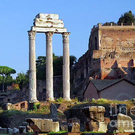 Temple Of Castor And Pollux, Rome by Douglas Taylor