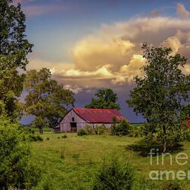Tennessee by Mitch Shindelbower