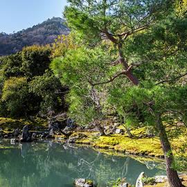 Tenryuji Temple Garden Kyoto Japan by Joan Carroll