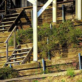 Terraces and Stairs  by Linda Brody