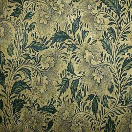 Textilliana Catus 2 No. 1 - Pulchra Materia  No. 1 by Gert J Rheeders