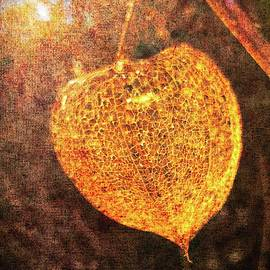 Textued Glowing Chinese Lantern by Mo Barton