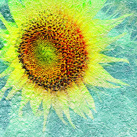 Textured Sunflower Design by Aimee L Maher ALM GALLERY