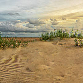 Textures in the Sand - Beach Dune at Emerald Isle NC by Bob Decker