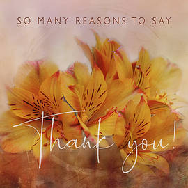 Thanks for Many Reasons by Terry Davis